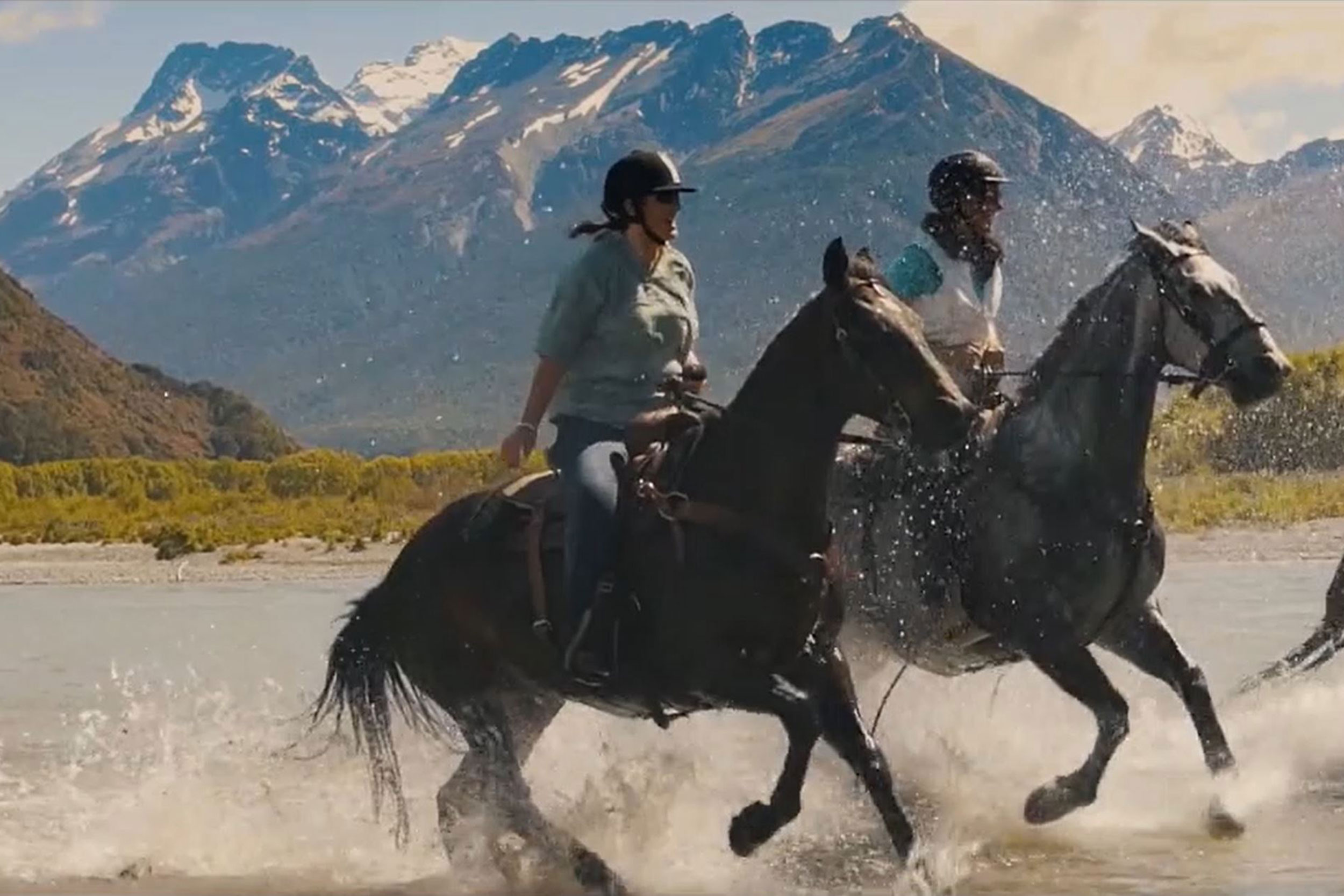 Rees River Pro - High Country Horses
